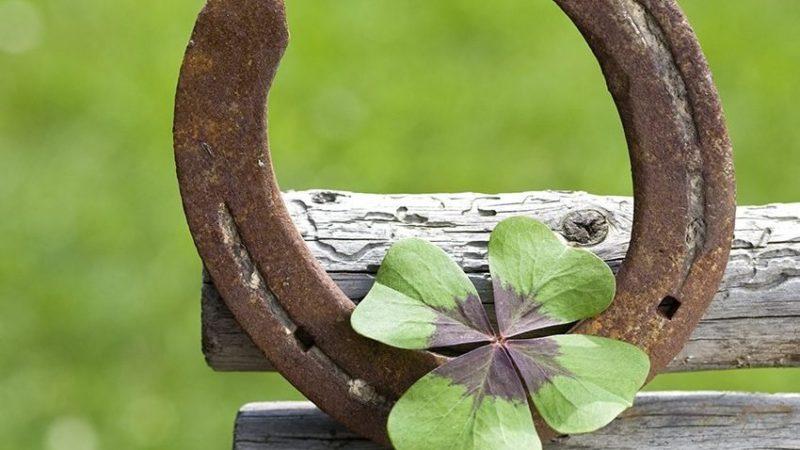 La herradura de la suerte: protección y fortuna