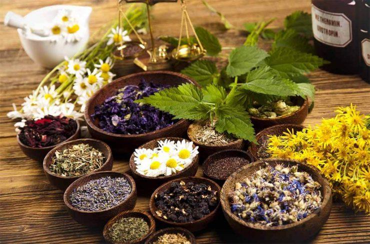 Terapias naturales y alternativas